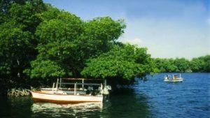 Laguna La Restinga.
